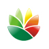Logo设计软件(EximiousSoft Logo Designer) V3.76 中文汉化版