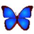 数码照片浏览器(bkViewer) V5.3b 绿色版