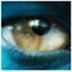 CoCo图像转换成word文字识别工具 V1.0.0 绿色特别版