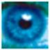 第三只眼监控腾博会 诚信为本 V7.3.0 破解版
