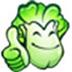 大白菜超級u盤啟動制作工具 V8.0.3.5 裝機維護中文版