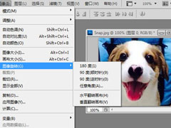 PhotoShop怎么旋转图片?PhotoShop旋转图片的方法