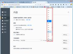 新版火狐浏览器怎么调整字体?火狐浏览器字体调整技巧分享