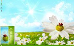 瓢虫停落花朵xp主题