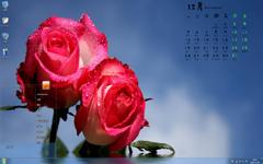 娇滴滴的玫瑰12月日历Win7主题