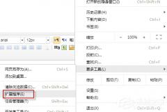 如何使用idm下载百度云文件?idm下载百度云文件的方法