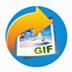 Vibosoft Animated GIF Maker V3.0.19 英文安裝版