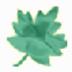 单词听写专家 V2.0 绿色版