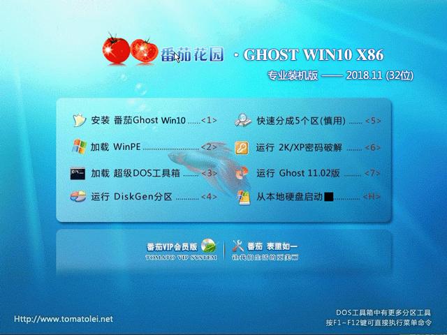 番茄花园 GHOST WIN10 X86 专业装机版 V2018.11 (32位)