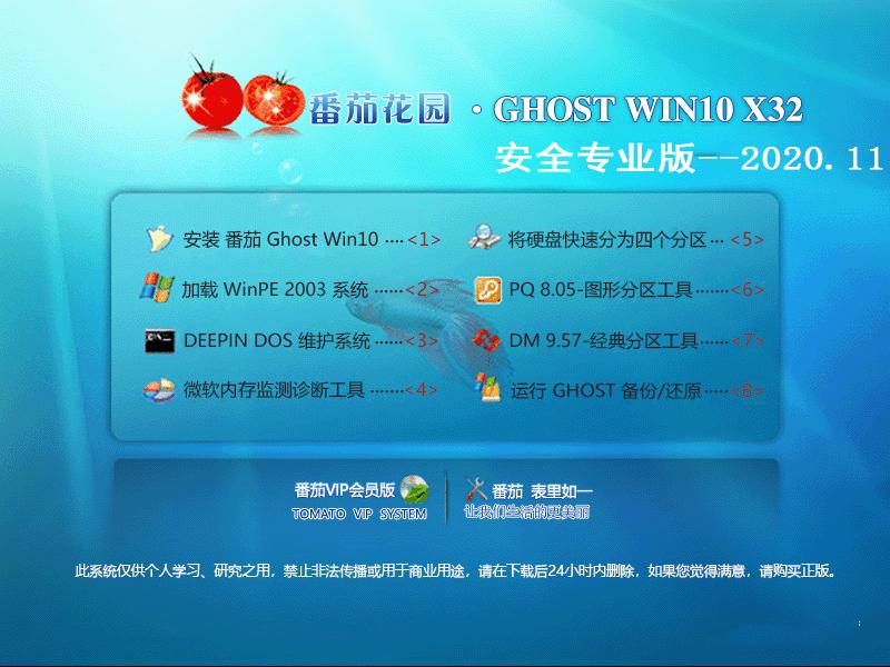 番茄花园 GHOST WIN10 32位安全专业版 V2020.11
