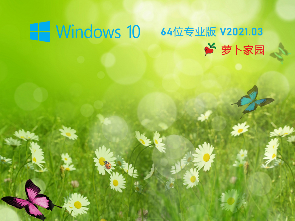 萝卜家园 Ghost Win10 64位 纯净专业版 V2021.03