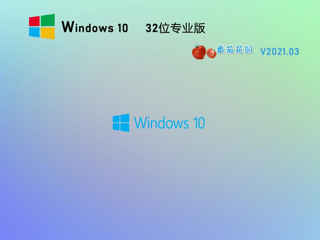 番茄花園Win10 20H2 32位專業版鏡像 V2021.03
