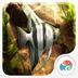 3D清新水族馆-梦象动态壁纸