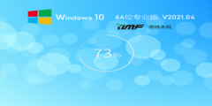 雨林木風Win10 20H2 64位完美裝機版 V2021.04