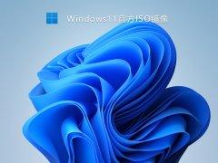 Win11 22000.282 ISO镜像 V2021